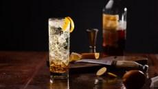 Japanese Whisky Highball