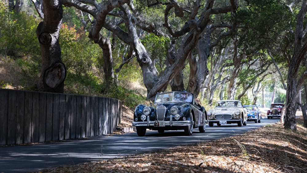 A convoy of classics on the 2021 Pebble Beach Tour d'Elegance.