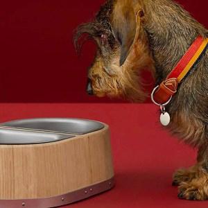 Hermès Dog Bowl
