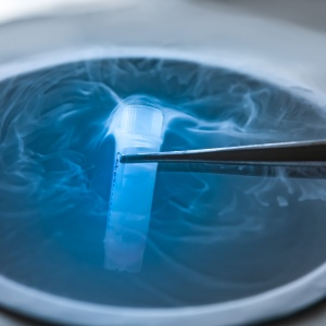 Cryopreservation of test tube on liquid nitrogen, a liquid nitrogen bank containing sperm and eggs cryosamples