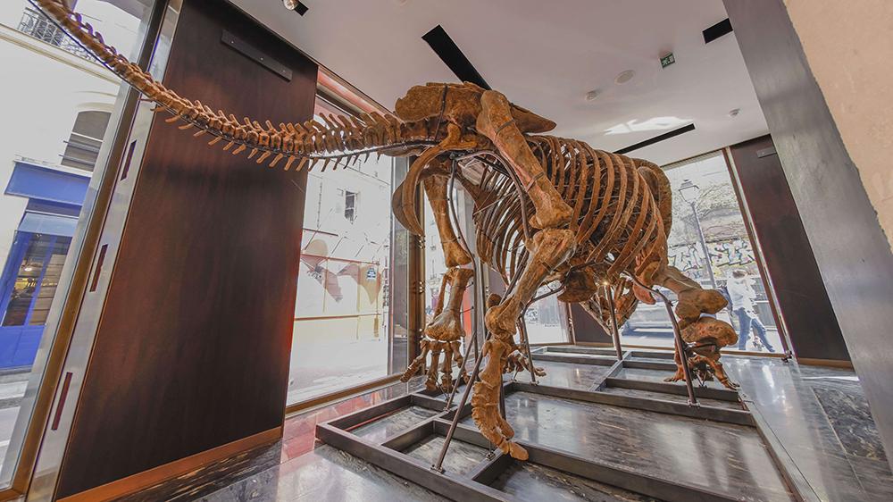 Big John Triceratops
